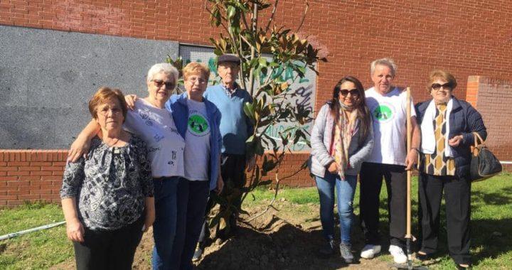 Vecinos de Santa Eugenia celebran el Día del Árbol