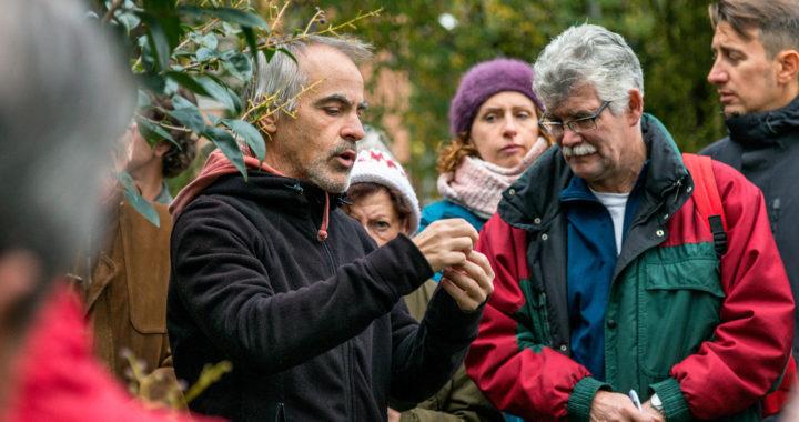El «Jardín Botánico Urbano de Santa Eugenia» recibe menos presupuesto de lo esperado
