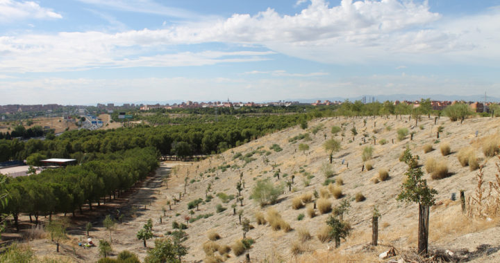 """El Cerro Almodóvar merece ser """"espacio natural especialmente protegido"""""""
