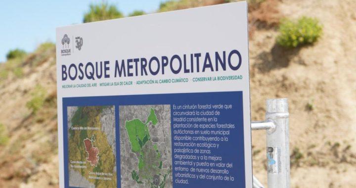 Hacia el mejoramiento del cerro Almodóvar, kilómetro cero del Bosque Metropolitano